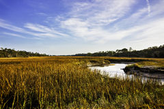 Salt marsh on Jekyll Island, GA Stock Image