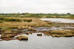 Salt Marsh, Keyhaven Reserve, Hampshire. View of the salt marsh beside the Solent at the Keyhaven Nature Reserve, Lymington, Hampshire Royalty Free Stock Images