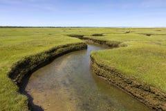 Salt Marsh Land stock images