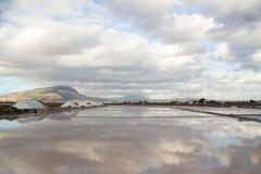 Salt marsh landscape Stock Images