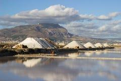 Salt marsh landscape Stock Photography