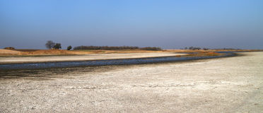 Salt marsh natural reserve Slano kopovo Royalty Free Stock Images