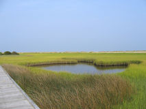 Salt marsh pond. A small pond of water in the middle of a salt marsh stock photos