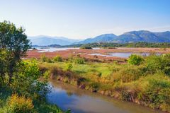 Salt marsh . View of special nature reserve Solila. Tivat, Montenegro. Salt marsh . View of special nature reserve Solila - swamp area of the coastal part of the Stock Photography