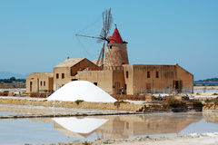 Salt mill Stock Images