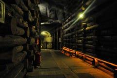 Salt mine Wieliczka Stock Images