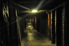 Salt mine Wieliczka Stock Image