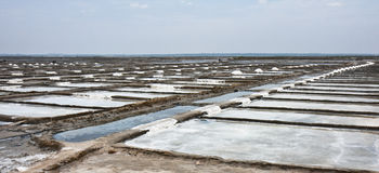 Salt Mines. Saline in Tamil Nadu, India Royalty Free Stock Photography