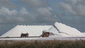 Salt mining on Bonaire stock footage