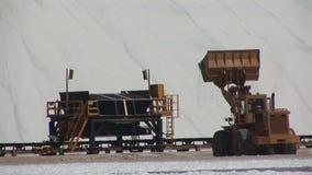 Salt mining on Bonaire stock video