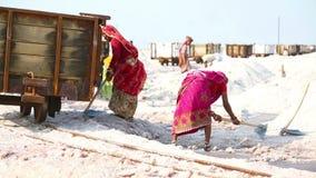 Salt mining stock footage