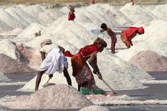 Salt mining on Sambhar lake in India Stock Images