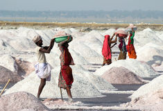 Salt mining on Sambhar lake in India Stock Image