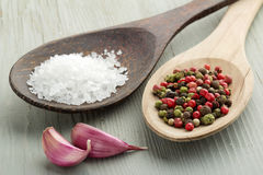 Salt, mix of peppercorns and garlic Stock Photos