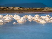Salt mounds in water pond Royalty Free Stock Photography