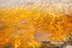 Salt pöl för Travertine Royaltyfria Bilder