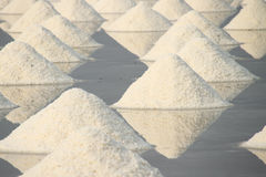 Salt pan. Stock Image