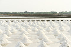 Salt pan. Stock Images
