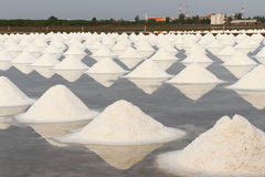 Salt pan. Royalty Free Stock Images