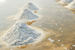 Salt pan. Royalty Free Stock Photography