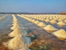 Salt. Pan sunrise view royalty free stock images