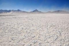 Salt panna nära Colchane i Chile. Arkivfoton
