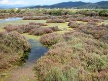 Salt pans. Scenic landscape of old salt pans in south of France Stock Image
