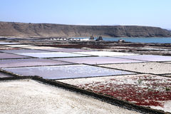 Salt pans. Canary Islands, Spain. Royalty Free Stock Images