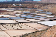 Salt Pans of Janubio Royalty Free Stock Photography