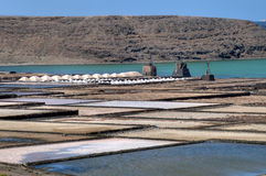 Salt-pans at Lanzarote Stock Photography