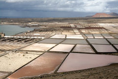 Salt Pans in Lanzarote, Canary Islands Royalty Free Stock Image