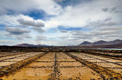 Salt pans Stock Photos