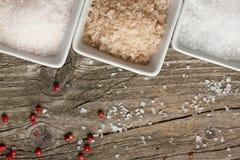 salt peppar fotografering för bildbyråer