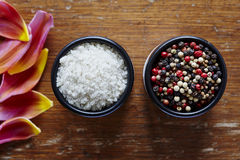 Salt and pepper in bowl asian cuisine Stock Photography