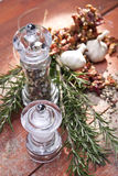 Salt and pepper mill Stock Images