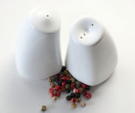 Salt and pepper pots Royalty Free Stock Photos