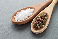 Salt and pepper. Sea salt and peppercorns on wooden spoons Stock Image