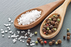 Salt and pepper. Sea salt and peppercorns on wooden spoons Stock Photography