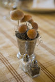 Salt and Pepper Shakers with Mushroom Centerpiece Royalty Free Stock Photo