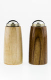 Salt and Pepper shakers on a white background. Stock Image