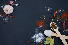 Salt and pepper on wooden spoons. With deco. Salt and pepper on wooden spoons. Decorate with bay leaves, chilli and garlic. Dark background. Close-up. Selective Stock Photo