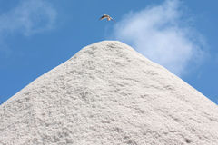 Salt pile Stock Image