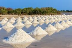 Salt Pile in Salt Farm Stock Photo