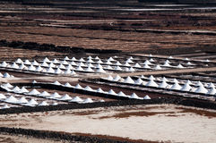 Salt Piles On A Saline Stock Photography