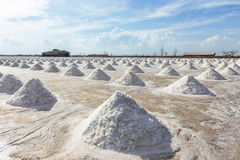Salt piles Royalty Free Stock Images
