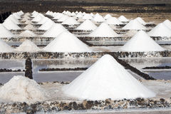 Salt piles on a saline exploration Royalty Free Stock Photography