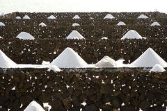 Salt piles on a saline exploration Stock Photography