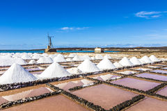 Salt piles in the saline of Janubio in Lanzarote with old toteen Stock Image