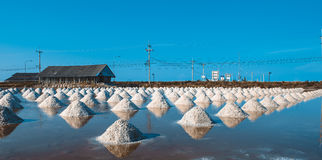 Salt of piles saline in Thailand Stock Photography