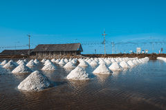 Salt of piles saline in Thailand Stock Image
